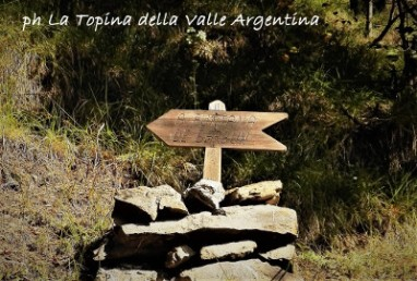 fontana barbone valle argentina
