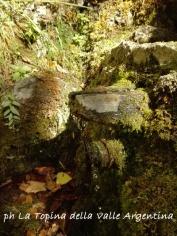 fonte barbone valle argentina 2