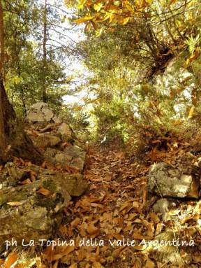 sentiero san romolo monte bignone