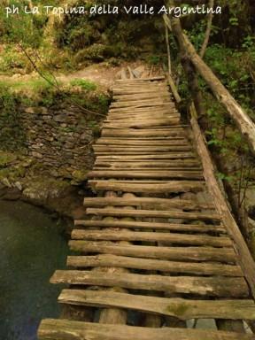 ponte rio grognardo