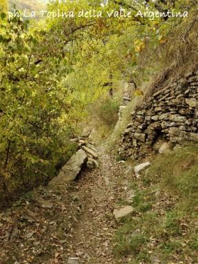sentiero carpasio2