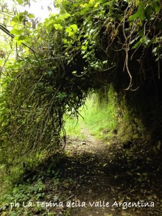 sentiero triora