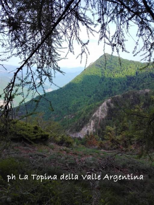 Monte Gerbonte2