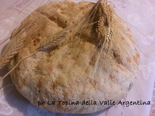 pane grano valle argentina