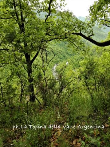 sentiero Rocca Andagna