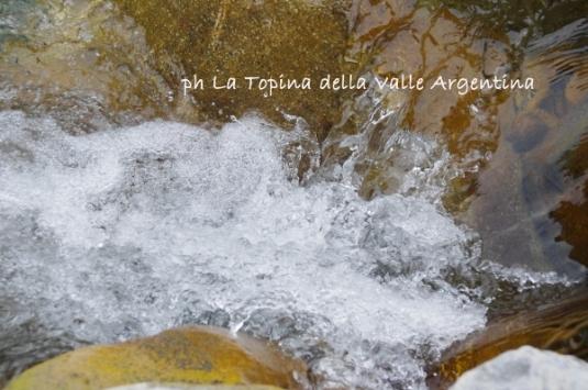 acqua torrente