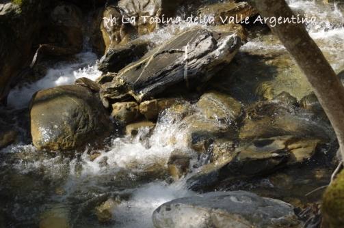 acqua torrente2
