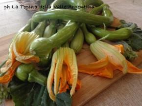 zucchina trombetta ligure
