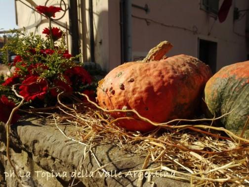 zucca autunno.jpg