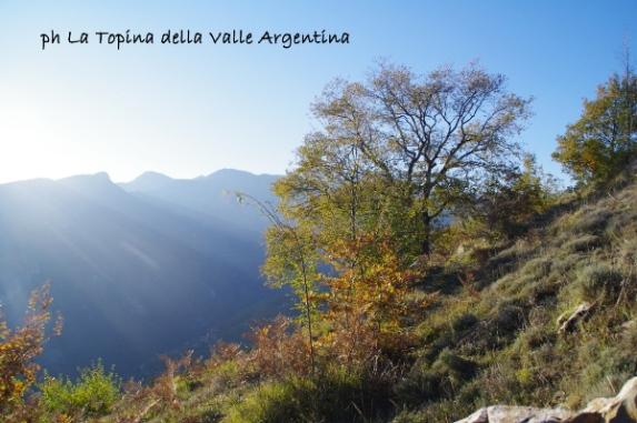 valle argentina carmo del corvo