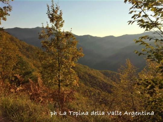 valle argentina2