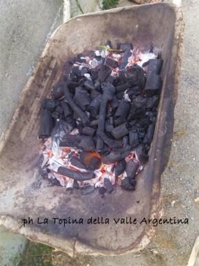 carbone legna