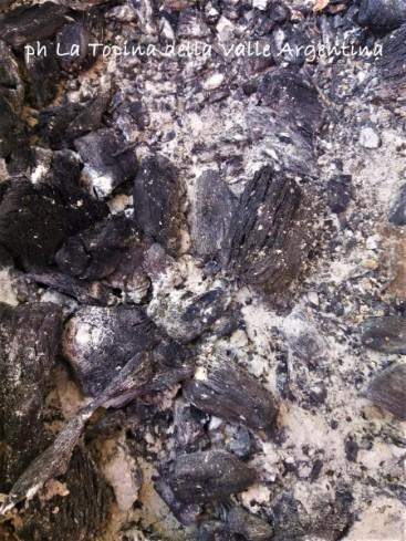 carbone legna2