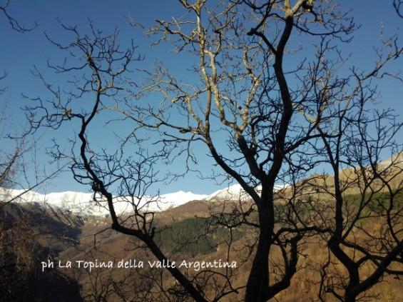 Andagna panorama.jpg