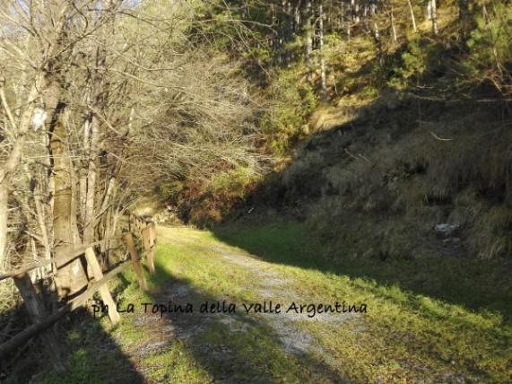 Andagna sentiero