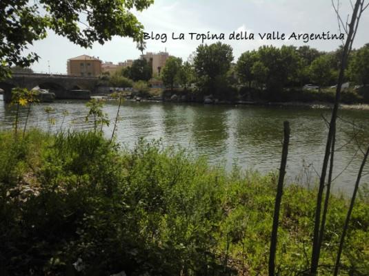 foce torrente Argentina Arma di Taggia