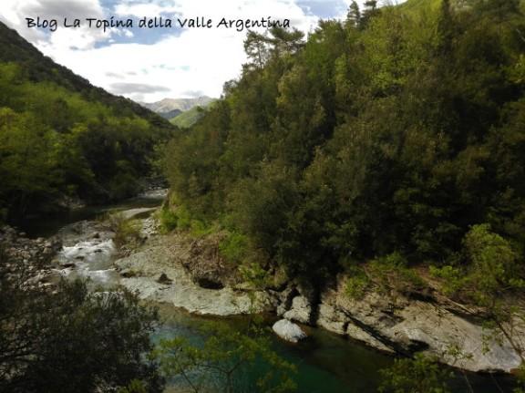 Valle Argentina strada di sotto2 - Glori