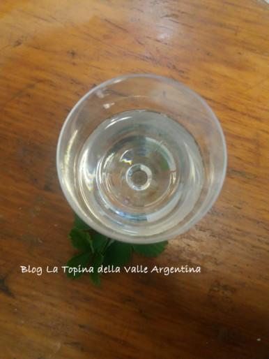 elisir fragole