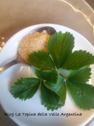 foglie di fragola e zucchero