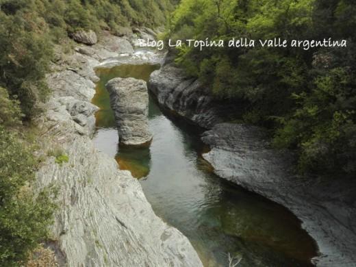 valle argentina torrente