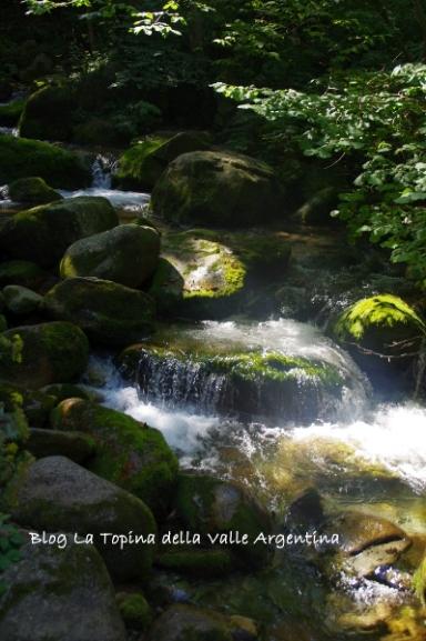 cascata pesio