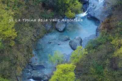 torrente argentina autunno