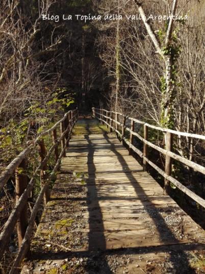 ponte legno creppo